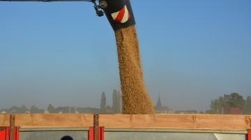 Le froid aux Etats-Unis aide les cours du bl� � se redresser