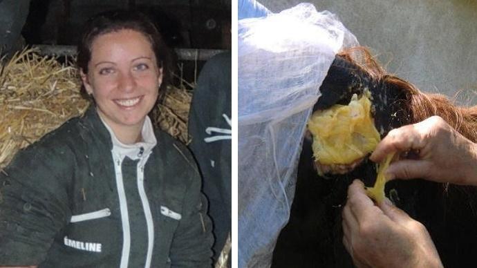 [Interview] Utiliser du miel pour soigner les plaies et blessures