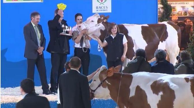 Tous les palmar�s des concours bovins du Salon de l'agriculture