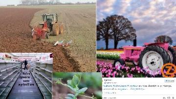 Travaux des champs, travail du sol et fun au programme