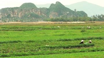 � Chine : des opportunit�s pour l�agriculture et l�agroalimentaire �