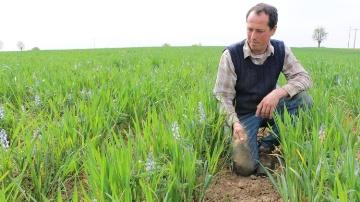 Les agriculteurs t�moignent sur l'agriculture �cologiquement intensive