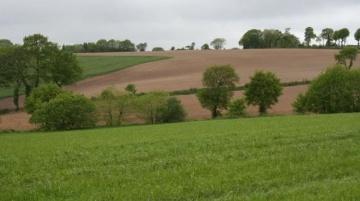 A 5.910 �/ha en moyenne, le prix des terres libres a augment� de 2,9 % en 2014