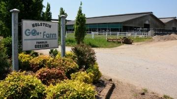 Go Farm, la � Maserati � de la g�n�tique holstein italienne