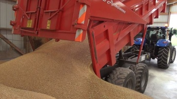 Le bl� et le soja emport�s par le marasme des mati�res premi�res