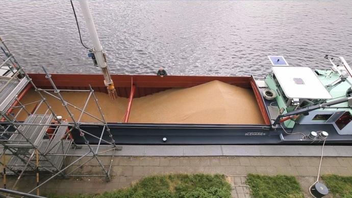 Chargement de blé dans un bateau