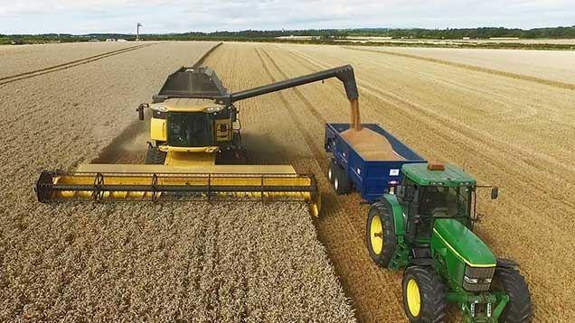 Les prix du blé, au plus bas depuis 10 ans, ont profité de perspectives catastrophiques en Europe.