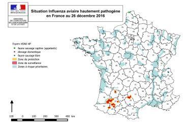 52 foyers recensés dans des élevages en France