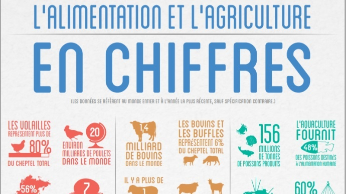 Les chiffres de l'agriculture et de l'alimentation en 2012