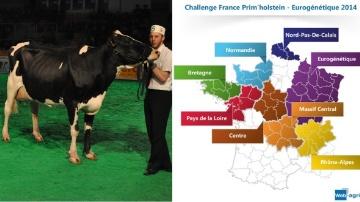 Challenge France Prim'holstein Eurogénétique 2014