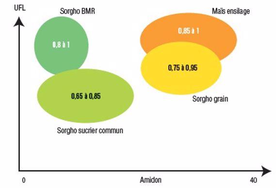 Positionnement des variétés des types variétaux de sorghos selon leur valeur énergétique (UF) et leur taux d'amidon.
