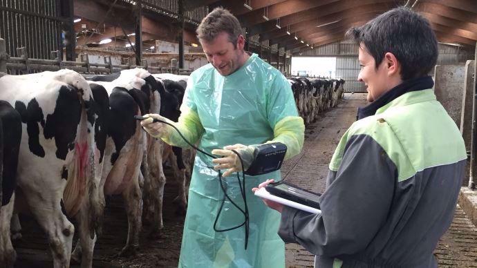 eleveur et veterinaire utilisant milkup de vetosoft