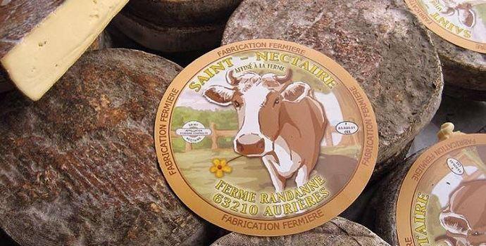Le Gaec des Violettes (63) produit du Saint-Nectaire fermier AOP mais également de la Fourme d'Aurières et du Gaperon. 80% des fromages sont vendus sur l'exploitation.