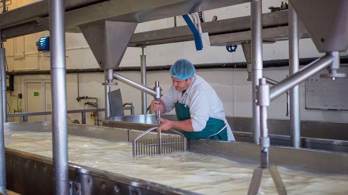 Les investissements à l'étranger des principaux transformateurs laitiers français ont été davantage orientés vers la production de fromages.