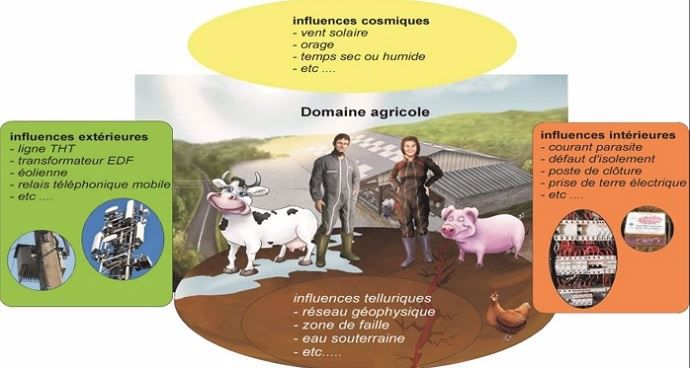 Tout ce qui peut perturber l'élevage sans qu'on s'en rende compte (courants parasites, failles souterraines...)