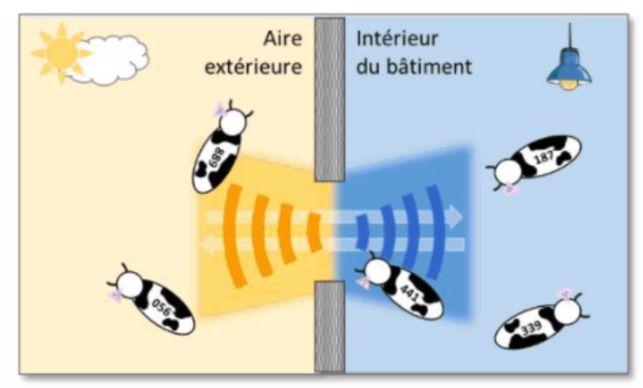 schéma d'explication du principe UHF