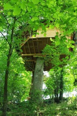 L'une des 2 cabanes installées dans les arbres sur l'exploitation d'Aurélie et Rodolphe Cauchard dans la Manche.