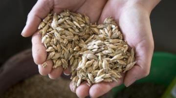 Solaal tente d'obtenir un avoir fiscal pour les dons de tous produits agricoles