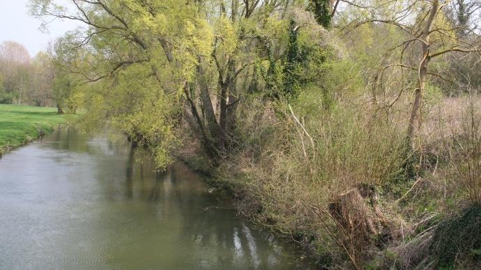 La carte de référence pour savoir si un cours d'eau est reconnu comme tel pour l'application des Bcae est différent d'un département à l'autre.