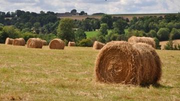 Pacifica déploie son contrat d'assurance prairies à toute la France