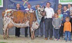 Fillette à l'Earl Tessier (28) remporte le national Normand 2015