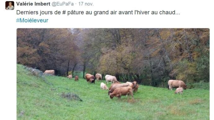 Page Twitter Valérie Imbert, agricultrice