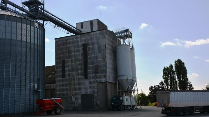 Le silo de Coulombs accueil l'été jusqu'à douze espèces différentes