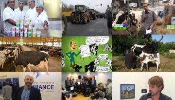 Pour les éleveurs, une entrée douloureuse dans l'ère après-quotas