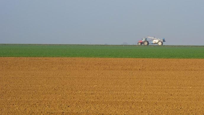 Premier apport fongicide sur blé tendre au mois de mars