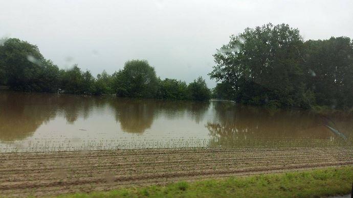 Les parcelles inondées des communes reconnues en état de catastrophe naturelle resteront éligibles aux aides Pac.