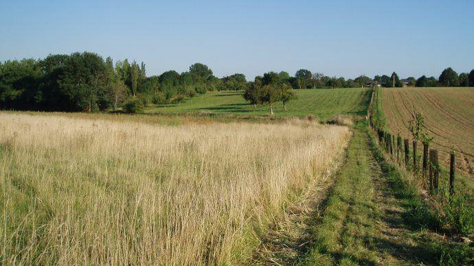 L'agence française de la biodiversité regroupera quatre organismes existants.