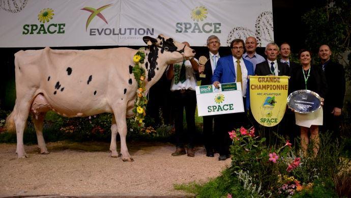 Carrefour des concours 2017 (Maj avec résultats Nuit de la Holstein)
