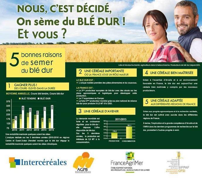 Affiche du plan de relance pour le blé dur