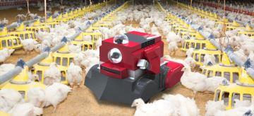Octopus Poultry Safe, le robot spécialisé dans la surveillance et l'entretien