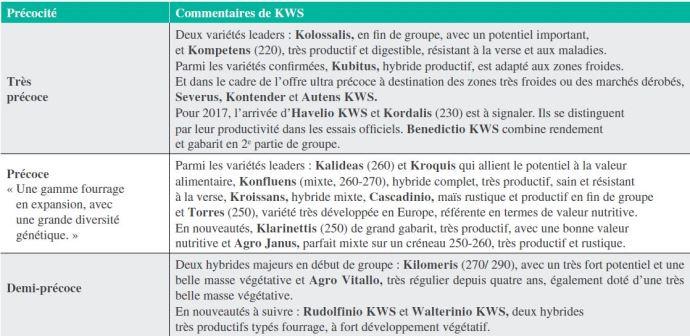 Maïs fourrage KWS