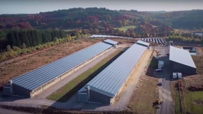 AVec ses panneaux solaires et son unité de méthanisation, le centre d'engraissement de saint-Martial fournira de l'électricité à 900 foyers.