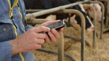 Web-agri recrute un journaliste (numérique) élevage