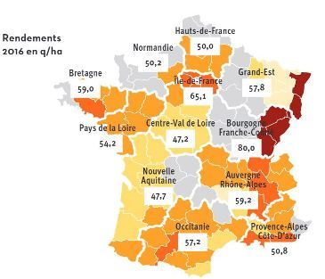 Semences de Provence