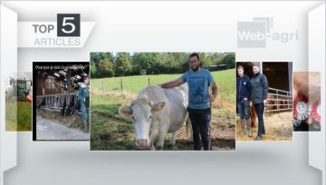 Ces cinq articles sont les plus consultés de la semaine sur Web-agri