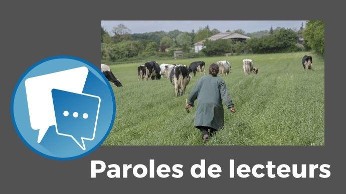 Agricultrice dans une prairie avec ses vaches