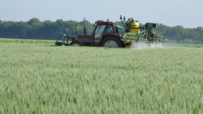 Pulvérisation dans une parcelle de blé.
