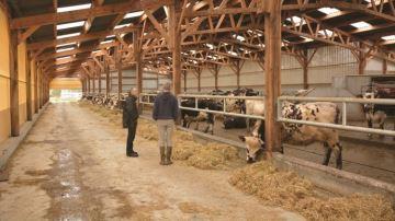 Des éleveurs s'engagent dans une démarche d'amélioration continue