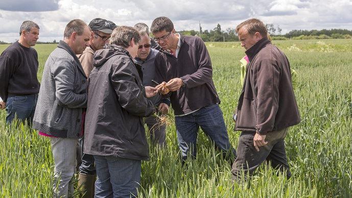 J.-M.Séronie: «Le collaboratif, une révolution pour l'avenir de l'agriculture»