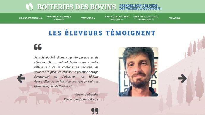 Le site internet boiterie-des-bovins.fr créé par le Cniel aide les éleveurs à reconnaître et gérer les boiteries
