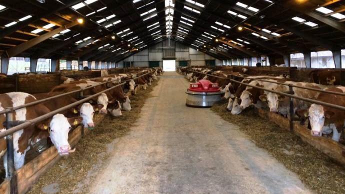 Le congrès annuel European Dairy Farmers s'est déroulé en République Tchèque