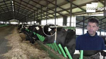 Michel Welter: «Nos vaches sont dehors toute l'année sous un grand parapluie»