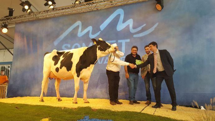 Jude BB Grande championne holstein Somme élevage 2017