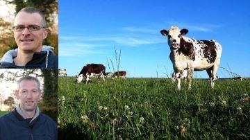 Entre motivation et crainte: trois éleveurstémoignent sur leur passage au bio
