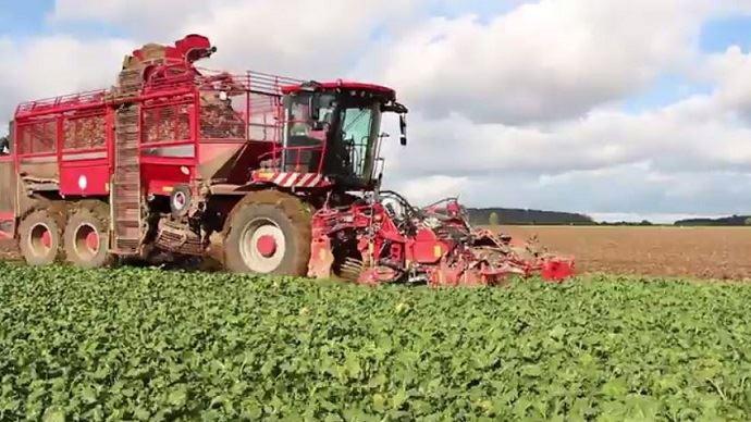 En moyenne, le rendement en betteraves s'annonce à 93 tonnes de betterave à l'hectare.