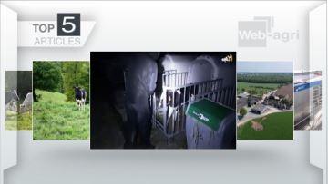 La mobilisation du monde agricole contre une vidéo anti-élevage fait le buzz